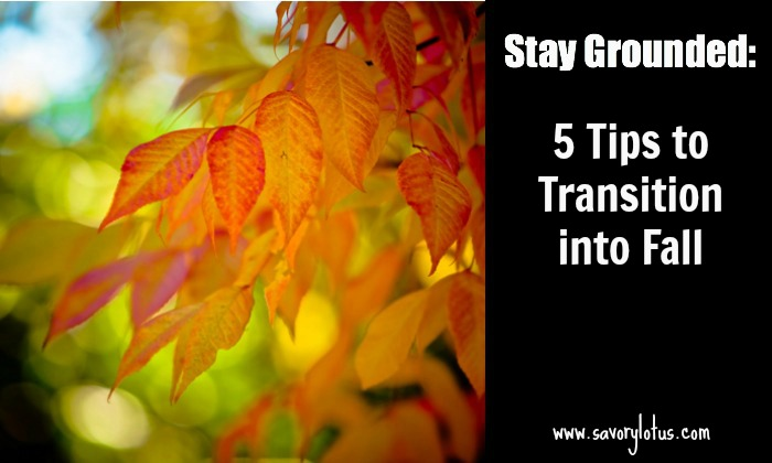 fall transition tips