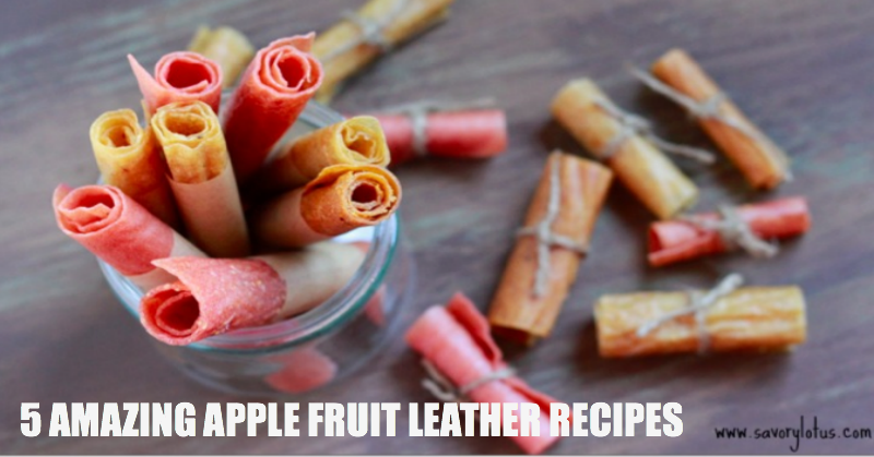 5 Amazing Apple Fruit Leather Recipes savorylotus.com