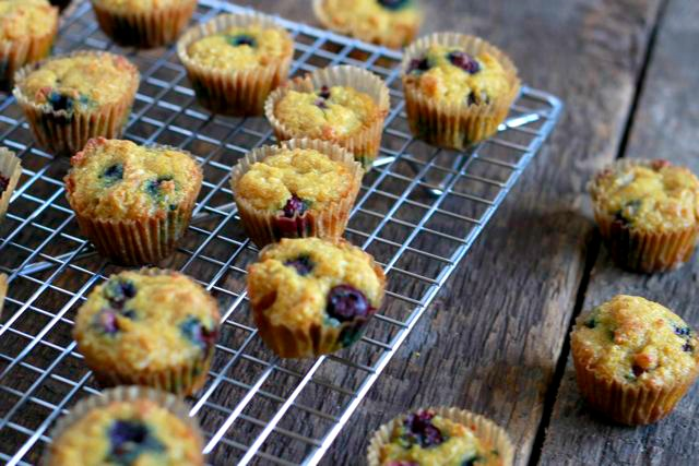 Blueberry Ginger Muffins (gluten and grain free muffins, paleo) ~~ savorylotus.com