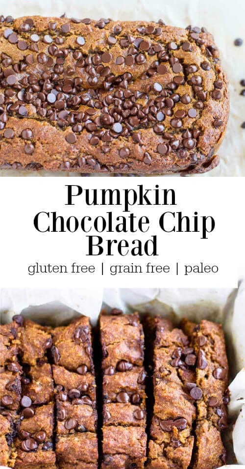 pumpkin bread loaf covered in chocolate chips