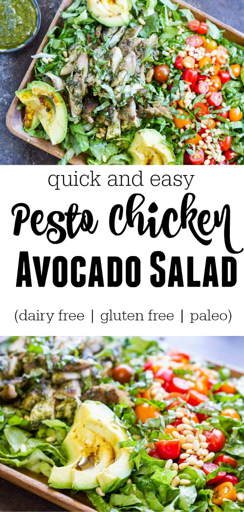 Pesto Chicken Avocado Salad - www.savorylotus.com