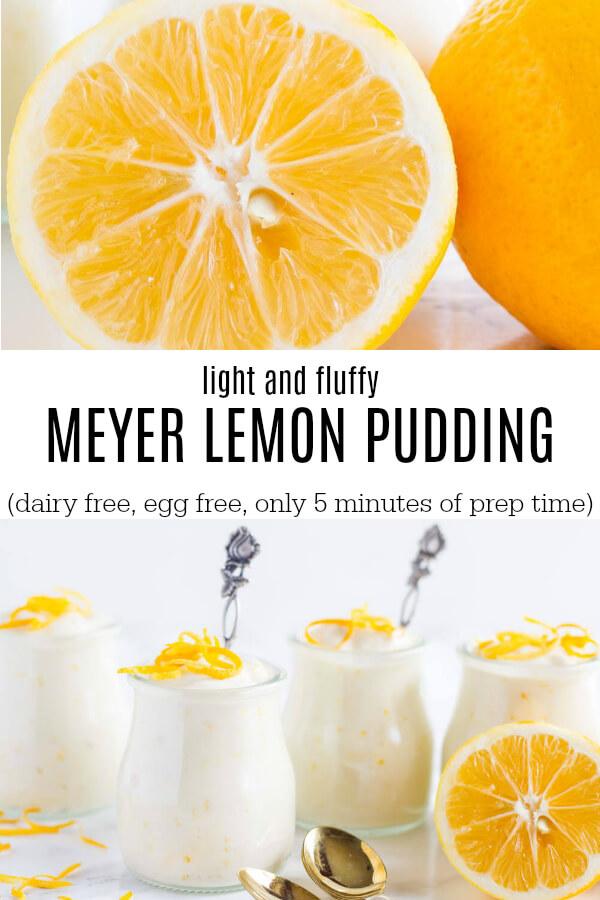 Meyer Lemon Pudding (dairy free) - www.savorylotus.com
