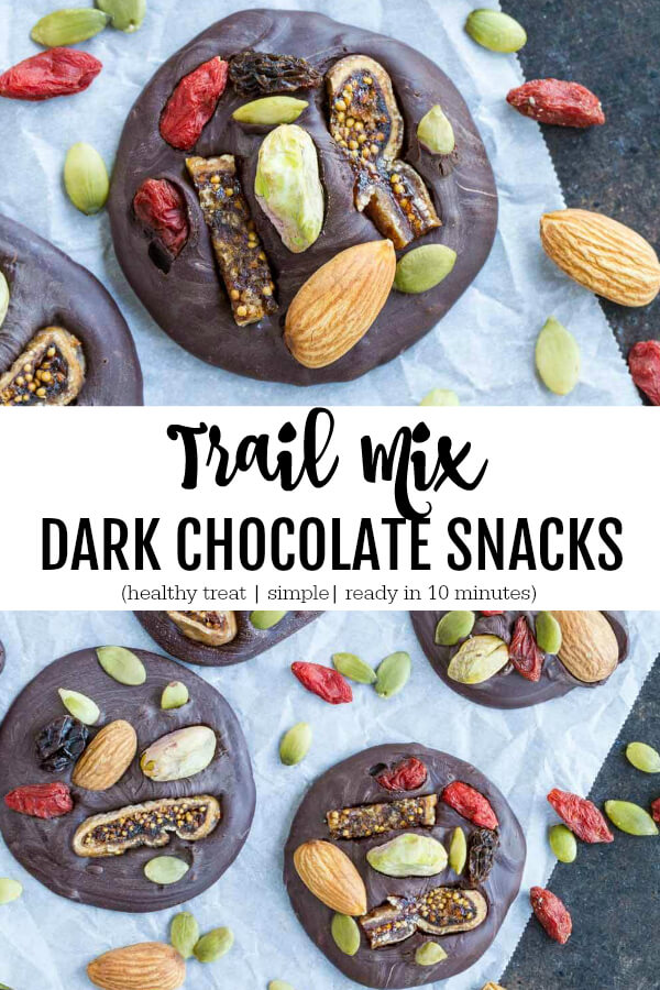 Trail Mix Dark Chocolate Snacks - www.savorylotus.com