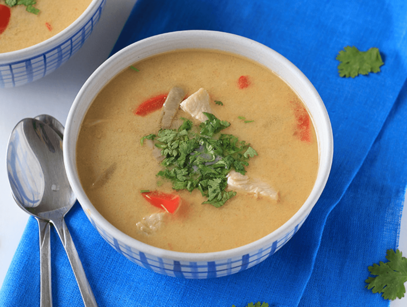 30 Easy Whole30 Soup Recipes | low carb thai chicken soup